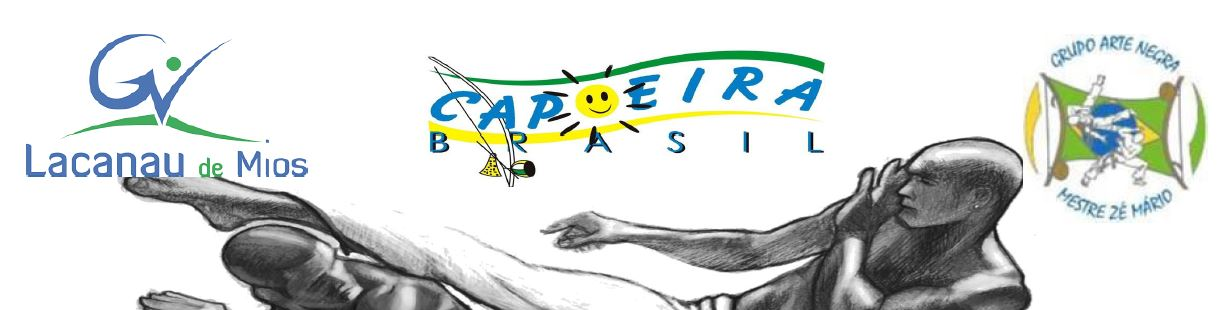 Logo stage capoeira long